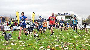 Deporte con perros